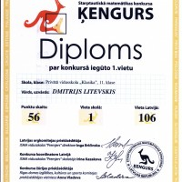DMITRIJS_LITEVSKIS.JPG