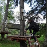 petniesiskas_dienas_privata_vidusskola_Klasika_06092017_021.jpg